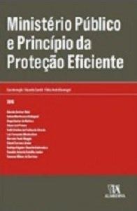 Ministério Público e Princípio da Proteção Eficiente