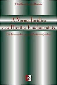 Imagem - A Norma Jurídica e os Direitos Fundamentais