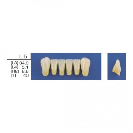 DENTE TRILUX ANTERIOR INFERIOR L5 COR 1A - VIPI (C/ 01 PLACA)