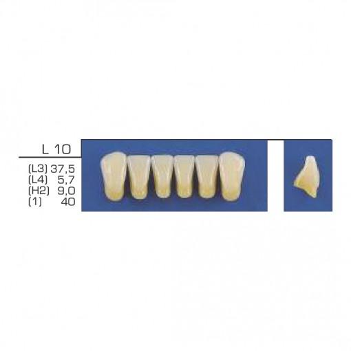 DENTE TRILUX ANTERIOR INFERIOR L10 COR 2A - VIPI (C/ 01 PLACA)