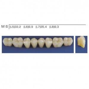 Imagem - DENTE TRILUX POSTERIOR INFERIOR M6 COR 2B - VIPI (C/ 01 PLACA)