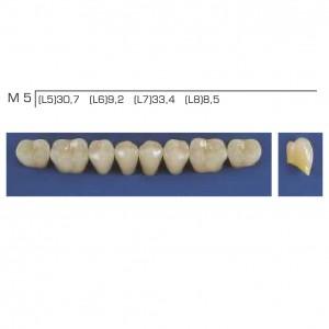 Imagem - DENTE TRILUX POSTERIOR INFERIOR M5 COR 4A - VIPI (C/ 01 PLACA)