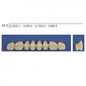 Imagem - DENTE TRILUX POSTERIOR SUPERIOR M5 COR 2B - VIPI (C/ 01 PLACA)