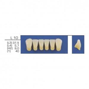Imagem - DENTE TRILUX ANTERIOR INFERIOR L10 COR 2B - VIPI (C/ 01 PLACA)
