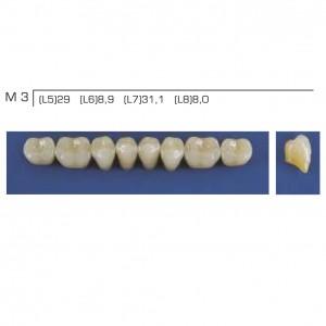 Imagem - DENTE TRILUX POSTERIOR INFERIOR M3 COR 1A - VIPI (C/ 01 PLACA)
