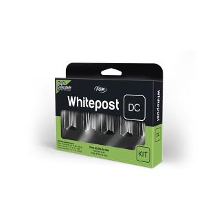 Imagem - KIT DE PINO FIBRA VIDRO WHITEPOST DC - FGM (C/ 01KIT)