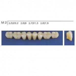 Imagem - DENTE TRILUX POSTERIOR INFERIOR M2 COR 2A - VIPI (C/ 01 PLACA)