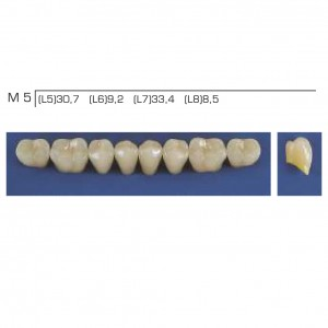 Imagem - DENTE TRILUX POSTERIOR INFERIOR M5 COR 2A - VIPI (C/ 01 PLACA)