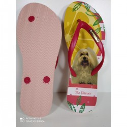 Imagem - Chinelo Fem Rafitthy 11702a Dog Tropical - 4911702ADOGTROPICAL187