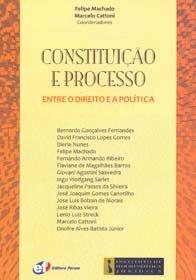 Constituição e Processo Entre O Direito e a Política