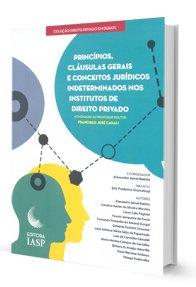 Imagem - Princípios, Cláusulas Gerais e Conceitos Jurídicos Indeterminados Nos Institutos de Direito Privado