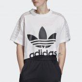 Imagem - Camiseta Adidas Lace