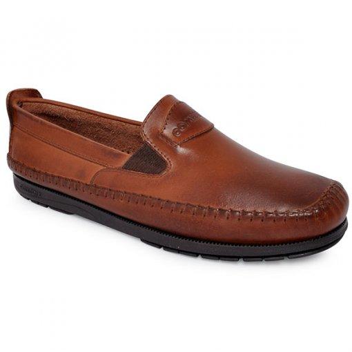 Sapato Comparini 340 Havana