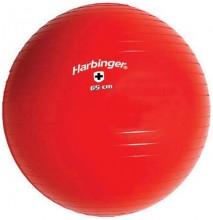 Gym Ball (Bola Suiça) - 65cm - Harbinger