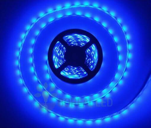 Fita LED 2835 Azul 5 Metros 300 Leds 12V IP20 S/ Silicone