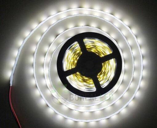 Fita LED 2835 Branco Frio 300 Leds 5 Metros 12V IP20 Dupla Face