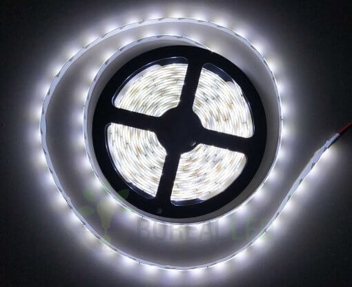 Fita LED 2835 Branco Frio 300 Leds 5 Metros 12V IP65 Dupla Face