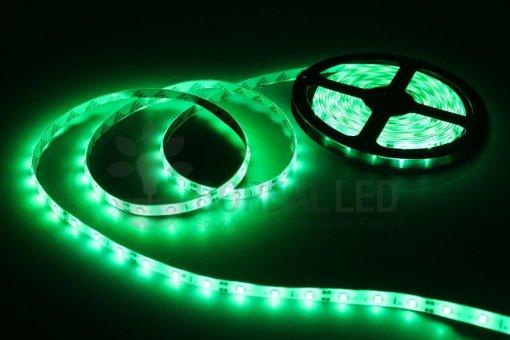 Fita LED 2835 Verde 300 Leds 5 Metros 12V IP20 Dupla Face