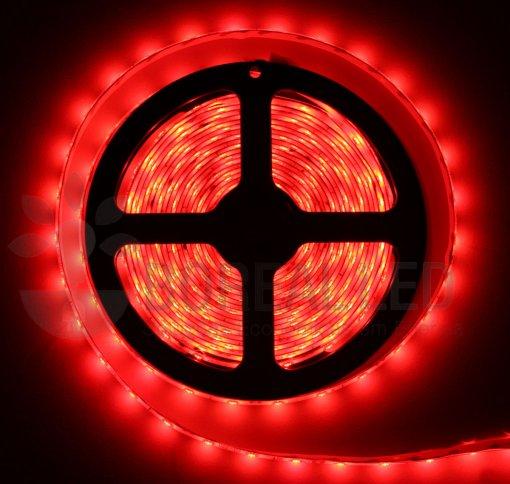 Fita LED 3528 Vermelho 300 Leds 5 Metros 12V IP65 Dupla Face