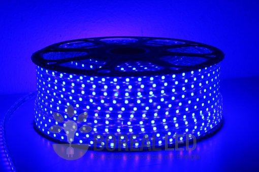Mangueira LED 5050 Chata 6mm 600 LEDS 100 Metros Azul 110V
