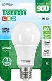 Imagem - Lâmpada LED Certificada Taschibra Bulbo 8W Branco Bivolt cód: 11080248