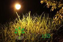 Espeto de Jardim LED COB 5W Âmbar