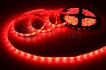 Imagem - Fita LED 3528 Vermelho 300 Leds 5 Metros 12V IP20 Dupla Face cód: BFL-3528-VERMELHO-IP20