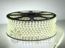 Imagem - Mangueira LED 5050 Chata 6mm 600 LEDS 100 Metros Branco Frio 110V cód: 45301