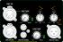 Amplificador digital para gabinete acústico com 700W @ 4Ω - 8Ω | Next Pro | M700 MIX 2