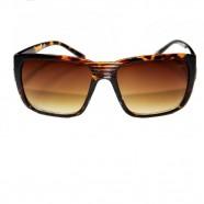 Óculos Modelo Buck Twik