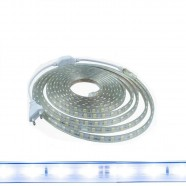 Imagem - Fita Led 5050 Branco Frio 5M 14W/M com Conector 127V cód: MKP000825001972