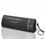 Caixa de Som Portátil Cinza  Mod. HIPBOX - Pure Acoustics