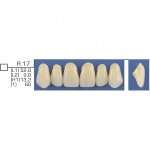 Imagem - DENTE TRILUX ANTERIOR SUPERIOR R17 COR 2B - VIPI (C/ 01 PLACA)