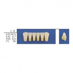 Imagem - DENTE TRILUX ANTERIOR INFERIOR L3 COR 1A - VIPI (C/ 01 PLACA)