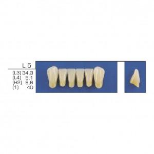 Imagem - DENTE TRILUX ANTERIOR INFERIOR L5 COR 4A - VIPI (C/ 01 PLACA)