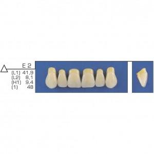Imagem - DENTE TRILUX ANTERIOR SUPERIOR E2 COR 2B - VIPI (C/ 01 PLACA)