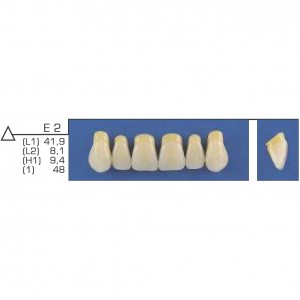 Imagem - DENTE TRILUX ANTERIOR SUPERIOR E2 COR 2A - VIPI (C/ 01 PLACA)