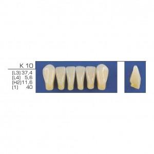 Imagem - DENTE TRILUX ANTERIOR INFERIOR K10 COR 2B - VIPI (C/ 01 PLACA)
