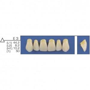 Imagem - DENTE TRILUX ANTERIOR SUPERIOR E3 COR 4A - VIPI (C/ 01 PLACA)
