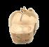 Chinelo Tanara Couro N3605 Marfim/cobre 3