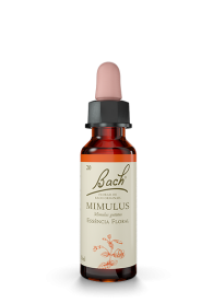 Imagem - Floral original mimulus BACH 10ml