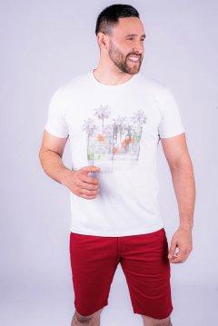 Imagem - Camiseta Masculina Manga Curta cód: 10552521