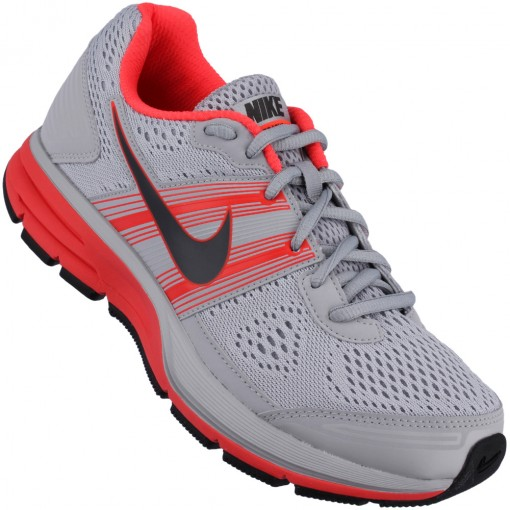 Tênis Nike Air Pegasus+ 29