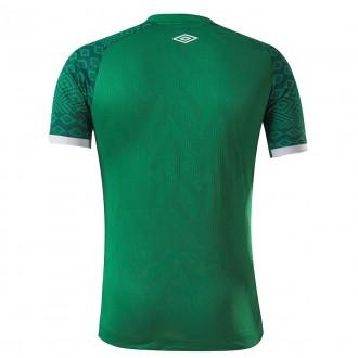 Imagem - Camisa Umbro Chapecoense Of.1 2021 Classic