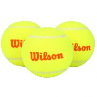 Imagem - Bola Wilson Tenis Starter Orange - WRT137300-301-387