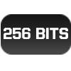 PLACA DE VÍDEO 256BITS