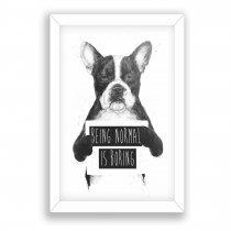 Imagem - Quadro Decorativo Cachorro Ps233 - Ps233