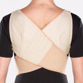 Imagem - Espaldeira para Postura