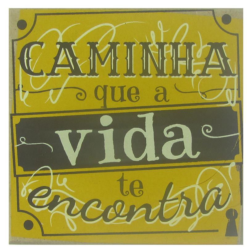 IMÃ CAMINHA 09X09CM