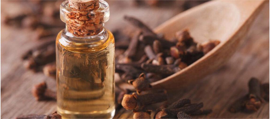 Conheça os óleos essenciais de Hortelã Pimenta e Cravo